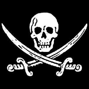 Jolly Roger (Jack Rackam) T-shirt from Piratemerch.com  $15.00