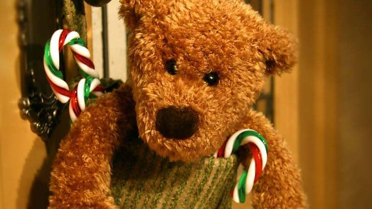 Stress of Christmas – Don't Let the Holidays Stress you Out