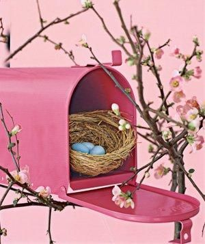 Mailbox used as bird house. Attract new neighbors by nailing an old mailbox to a branch and watch house finches and wrens flock to feather their nests.