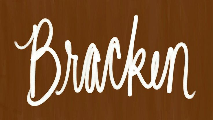 """Bracken. Unisex name. Nicknames Bracks or Brax. Perfect for the wilderness-loving country child! An Irish surname, an Anglicized form of Ó Breacáin, or else directly from the Norse/English word """"bracken,"""" which refers to a coarse fern in the woods. Cousin in sound to #Brandon, could be in tribute to a father. Bracken is a genus of fern consisting of about ten species, found growing all over the world. #baby #boy #name #names #unisexnames #boynames #girlnames #naturenames #bracks #brax"""