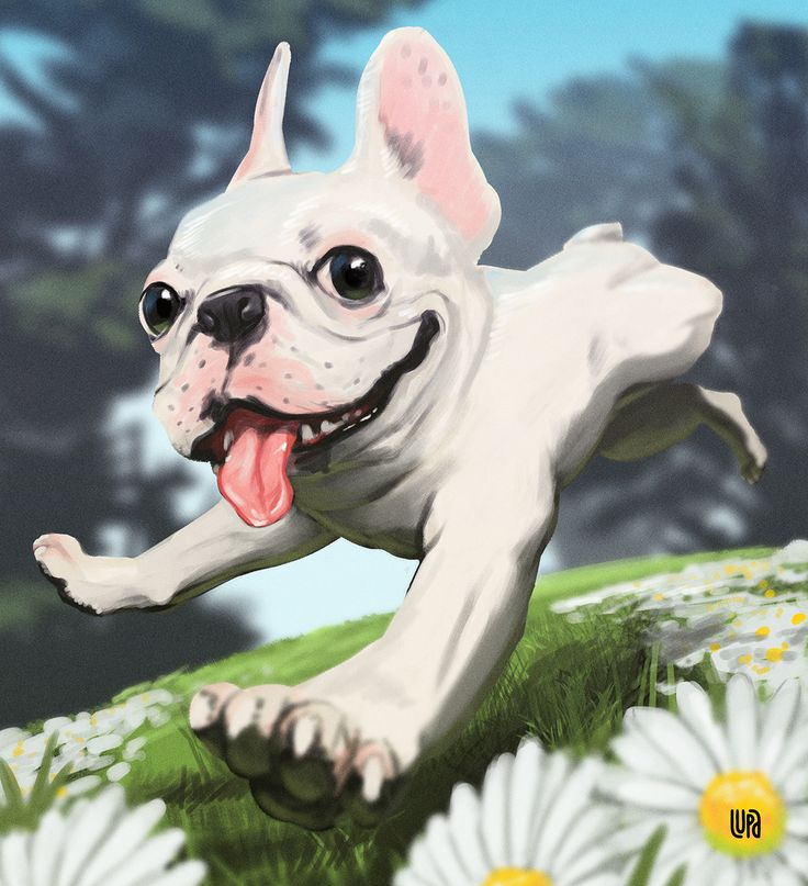 All Dogs On Behance