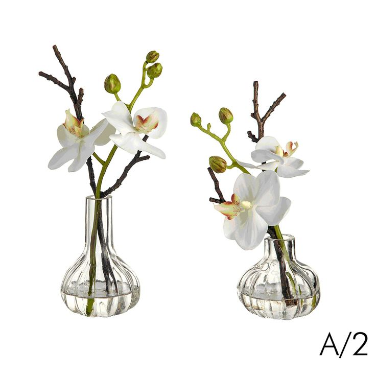 Sia home fashion orchid in vase