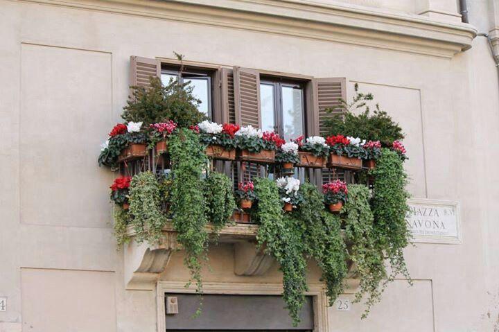 Beautiful balcony. Piazza Navona, Rome.