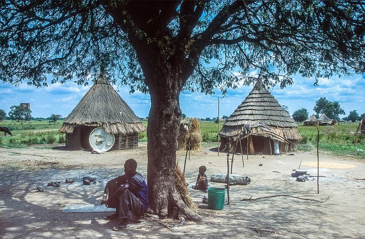 https://flic.kr/p/g9zbG | Ethiopia, Gamella region : Nuer village #2 | When the soil of a village becomes depleted, the Nuer move to a nearby fertile site to cultivate new ground.