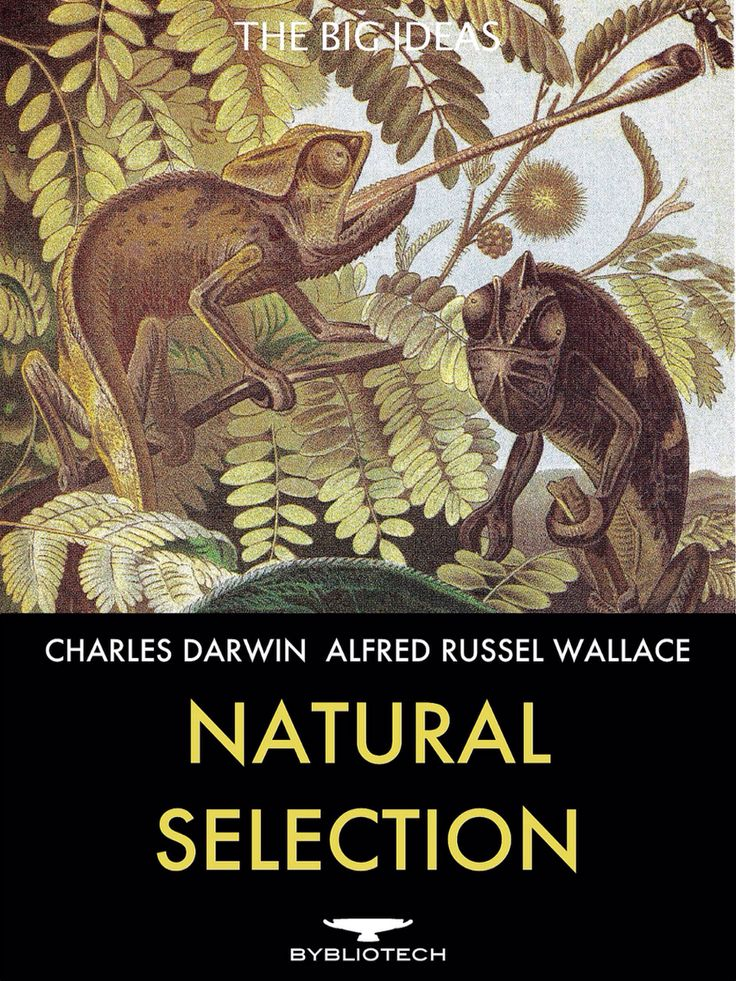 natural theory in state origin Darwin's theory of evolution - natural selection  charles darwin, on the origin of species by means of natural selection, or the preservation of favoured races in .