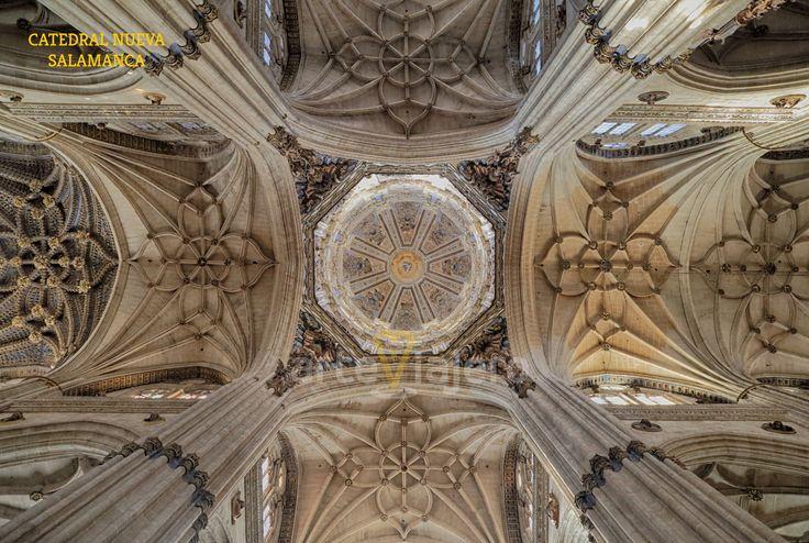 Catedral Nueva de #Salamanca Vista de las bóvedas http://arteviajero.com/