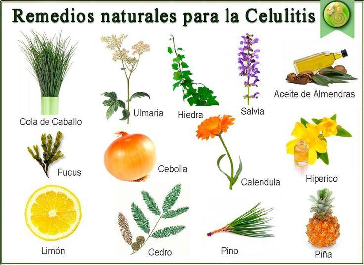 Remedios naturales para la celulitis http://mejoresremediosnaturales.blogspot.com/