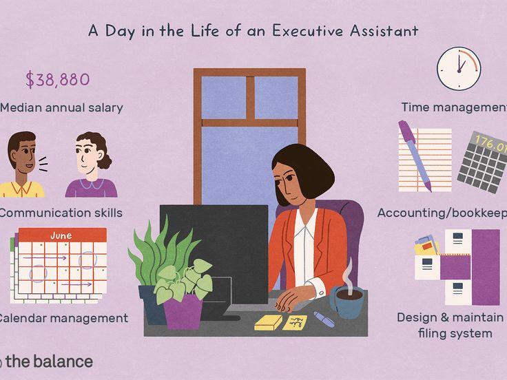 C Level Executive assistant Resume Luxury Executive
