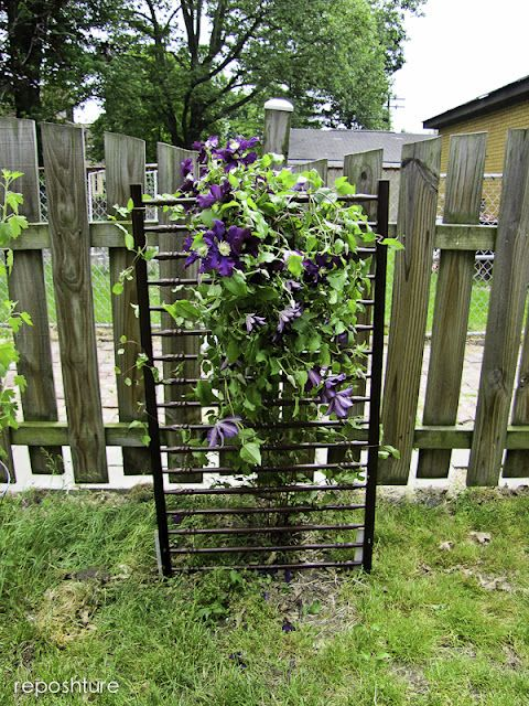 from Kim @Reposhture; repurpose crib sides into clematis trellis