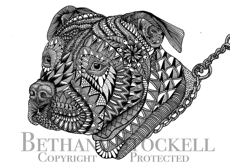 Pitbull Mandala Drawing By Bethany Stockell Bls Designs