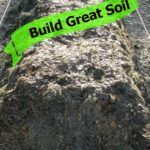 Build Million Dollar Garden Soil