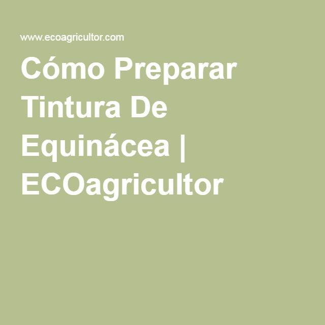 Cómo Preparar Tintura De Equinácea   ECOagricultor