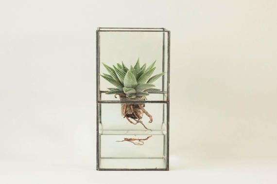 Geometric glass terrarium - Indoor planter - Tiffany stained glass - Minimalistic - Glass planter - Modern home decor - Succulent - Gift