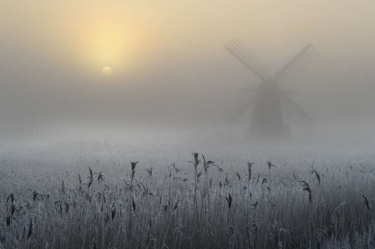 Andrew Bailey, United Kingdom - Freezing Fog and Hoar Frost – WINNER – 3rd Over 16s*** - Andrew Bailey/RMet-RPSWeather Photographer of the Year 2016