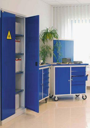 #elzap #meblebiurowe #meble #furniture #poland #warsaw #krakow #katowice #office #design #officedesign #workspace #school #blue #cabinets #blind www.elzap.eu