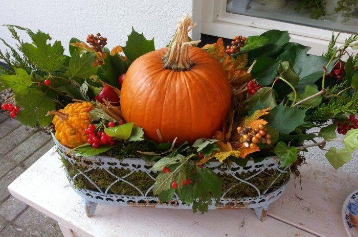 Herfst decoratie pompoen