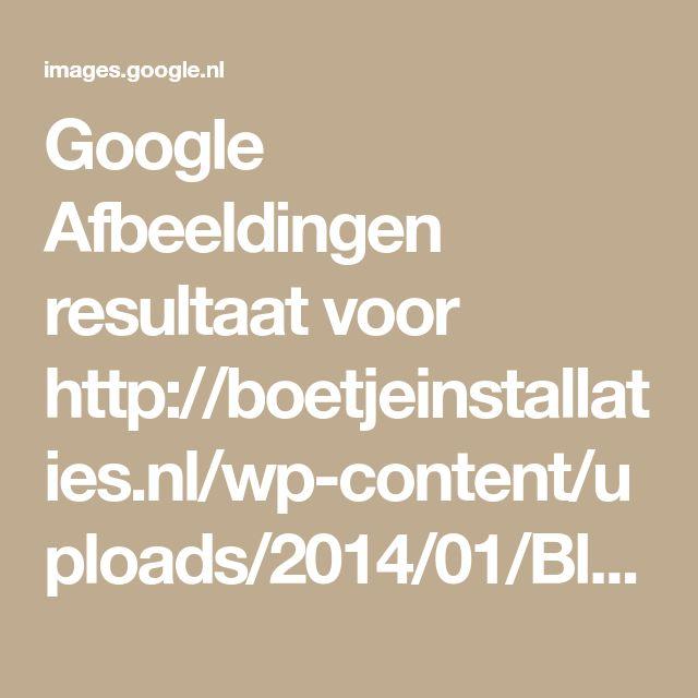 Google Afbeeldingen resultaat voor http://boetjeinstallaties.nl/wp-content/uploads/2014/01/Bladvangers-zinken-goot-5.jpg