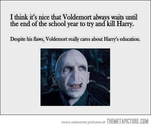 education is very important to death eaters...: Voldemort, Funny Pictures, Harrypotter, An Education, So True, Harry Potter Humor, Schools Kids, Funny Harry Potter, True Stories