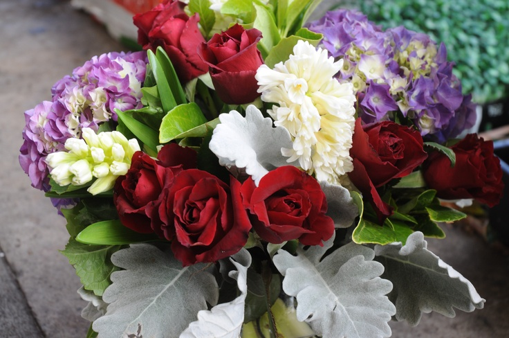 red roses, hydrangea, hyacinth and dusty miller- dusty miller designs
