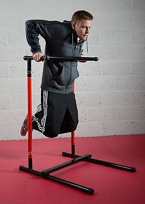 Pull Up Mate Portable Pull Up Bar Dip Station and More - Use Compact or Extended