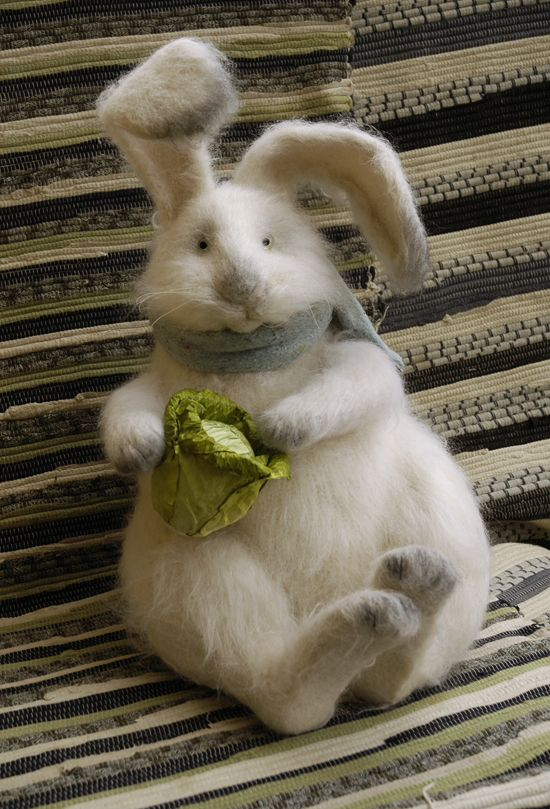 rabbit with cabbage