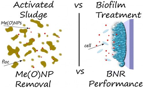 BiofilmsVersus Activated Sludge: Considerations inMetal and Metal Oxide Nanoparticle Removal from Wastewater