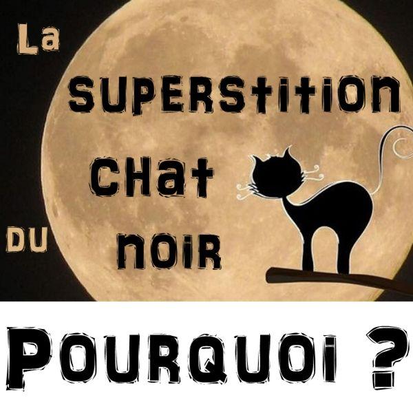 D'où vient la superstition du chat noir ?