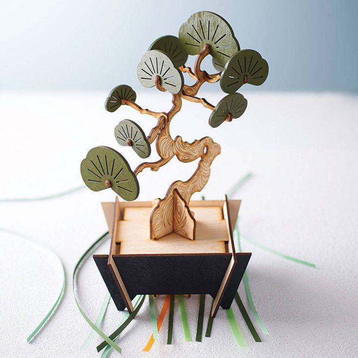 flat packed yew bonsai tree kit by pack & tickle | notonthehighstreet.com