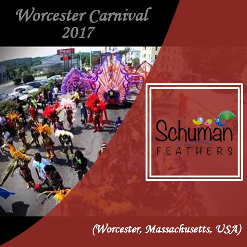 Get started with your preparations for the Worcester Carnival 2017, as you buy online the exclusive range of carnival feathers to craft adorable carnival bikini costumes, feather headdresses, wings, boots, etc. #carnival #feathers #feathersforcarnival #craft #celebration