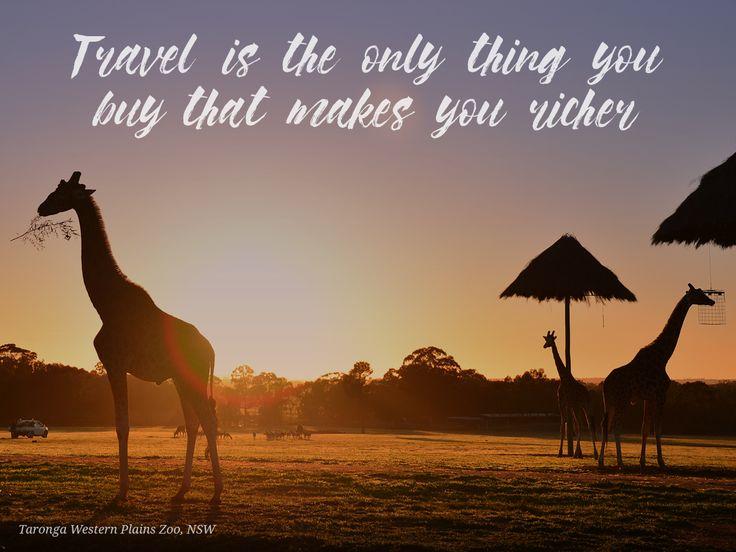 #richinexperiences #travel #wealth #zoo #giraffe #thatch #taronga #westernplains #zoo #tarongazoo #NSW #quotes #inspiration #dubbo