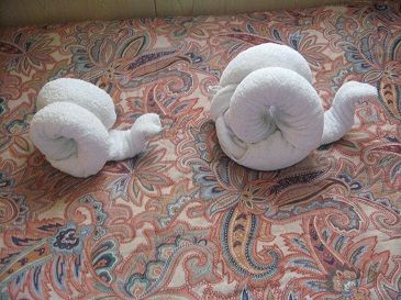 Towel Animal Snails