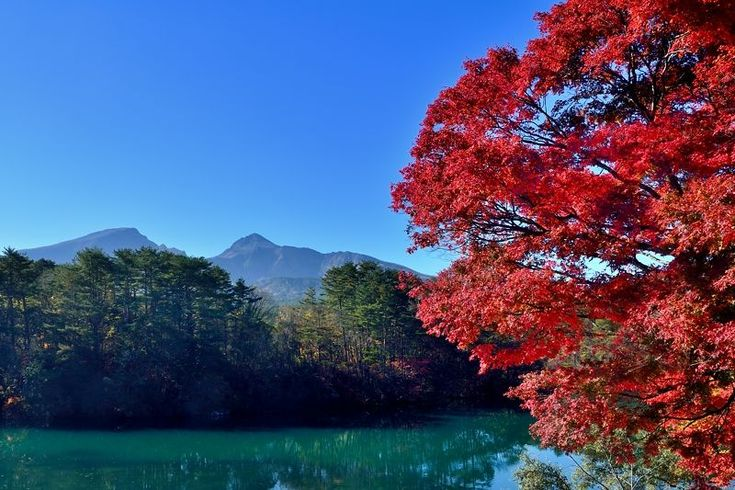 東北の秋は美しい!福島県・五色沼で紅葉×沼×磐梯山の絶景を堪能 | 福島県 | Travel.jp[たびねす]