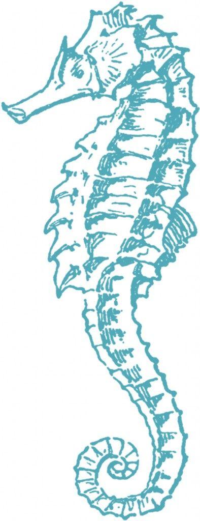 Free Sea Horse Clip Art - The Graphics Fairy