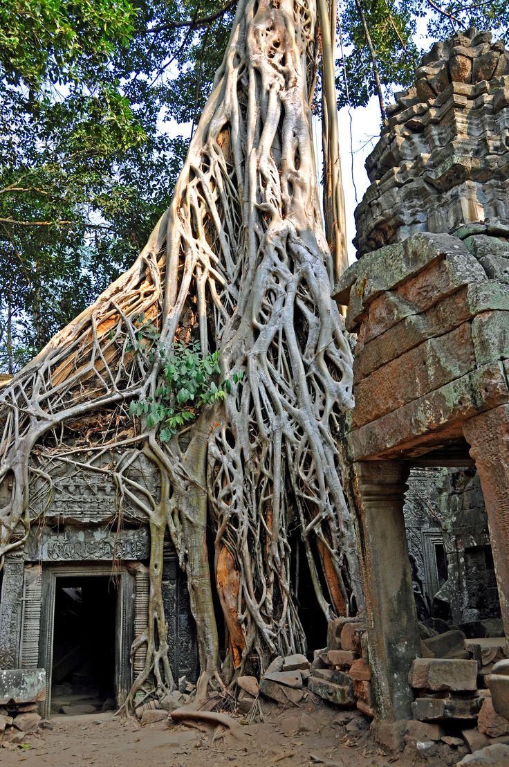 At Angkor Wat Temple in Cambodia