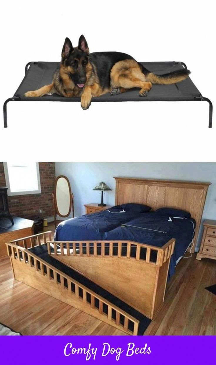 Best Doggie Beds For Small Large Dogs You Searching For Lg Dog Beds Dog Step For Bed Or Even See Details About R Fancy Dog Beds Cool Dog Beds Top Dog