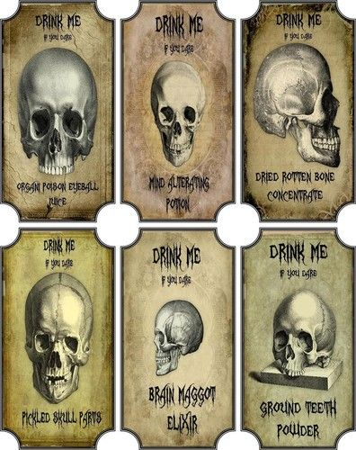 Vintage Inspired Halloween Skull 6 Large Bottle Label Stickers Apothecary Labels | eBay