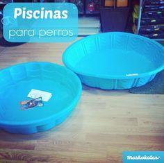 Cómo proteger a nuestros perros frente al calor - piscinas para perros #perros #verano #calor #dogs #piscinasperros