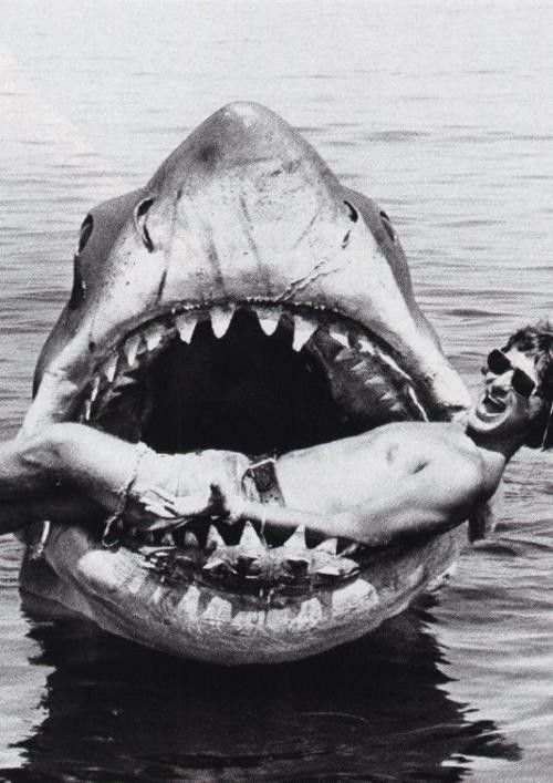 Steven Spielberg on the set of Jaws.
