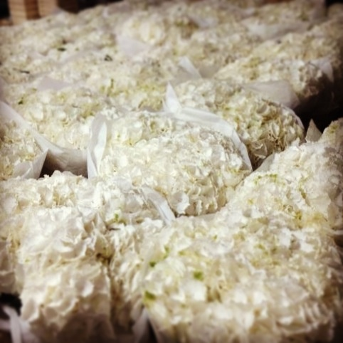 ¡Una marea de hortensias para nuestras bodas este fin de semana!