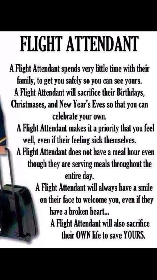 107 best Flight Attendant images on Pinterest Model, Words and - resume for flight attendant