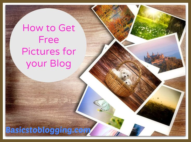 When it comes to blogging there is a lot to be learned about web design, creating and posting content, marketing, advertising and also photography.  Of course blogging does encompass many more topics in addition to what I mentioned above and photography or photo images for your blog may be one of the most important factors to a blog aside from your content.