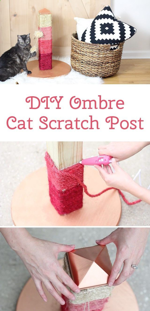 Your cat will LOVE this DIY ombre scratching post. The color possibilities are endless!