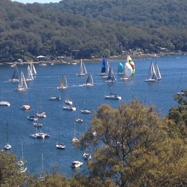 Saturday races on Pittwater