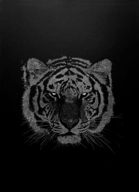 Tiger Atelier Kouglof  Sérigraphie