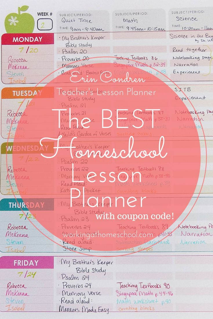 Erin Condren Teacher's Lesson Planner Review