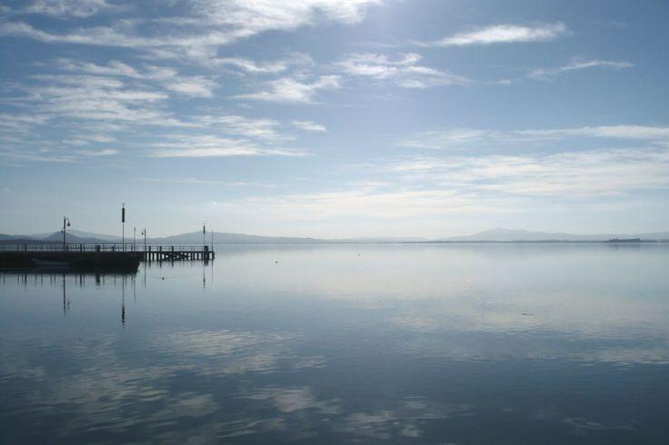 The Battle of Lake Trasimeno