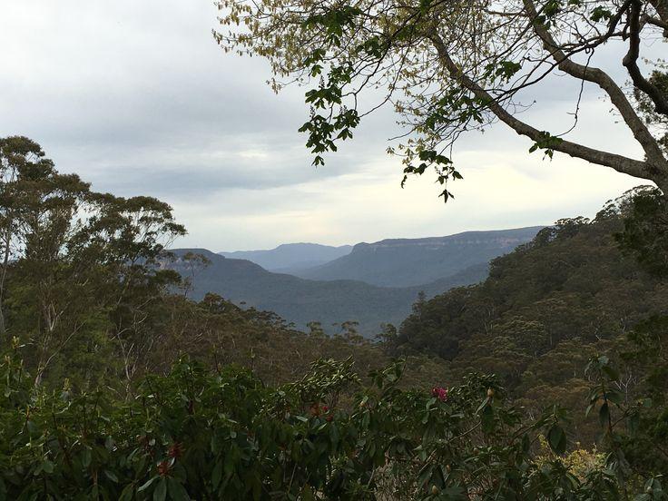 Blue Mountains NSW