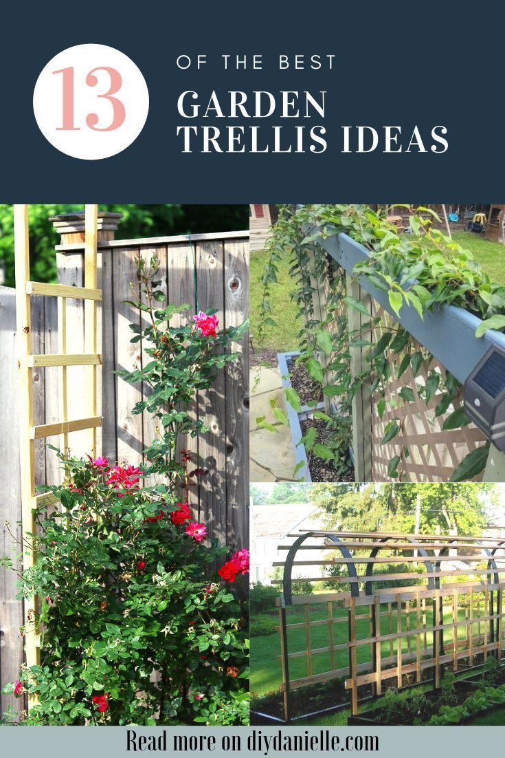 13 Stunning Easy Garden Trellis Ideas Garden Trellis Easy