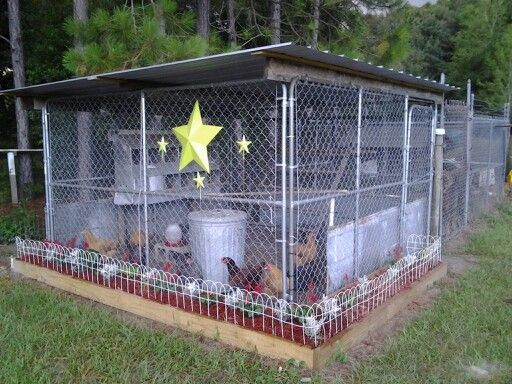 Chicken coop Maded out of a dog kennel...by T-N- T..our girls love it...my husband and i put chicken wire on the in side ..this work out great......