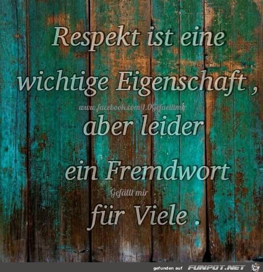 funpot: Respekt ist.jpg von Renilinz